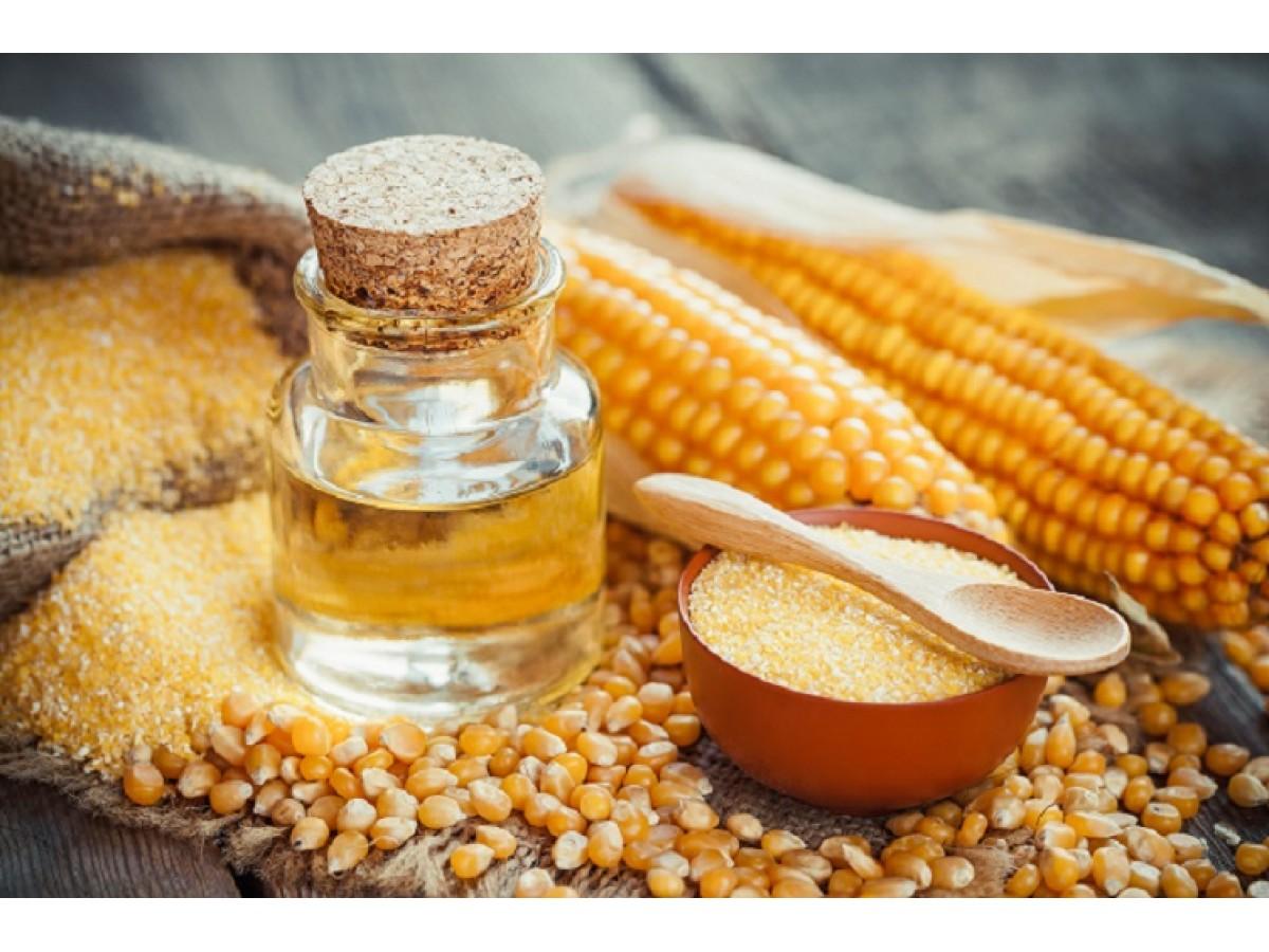 Кукурузное масло холодного отжима - в чем его основная польза