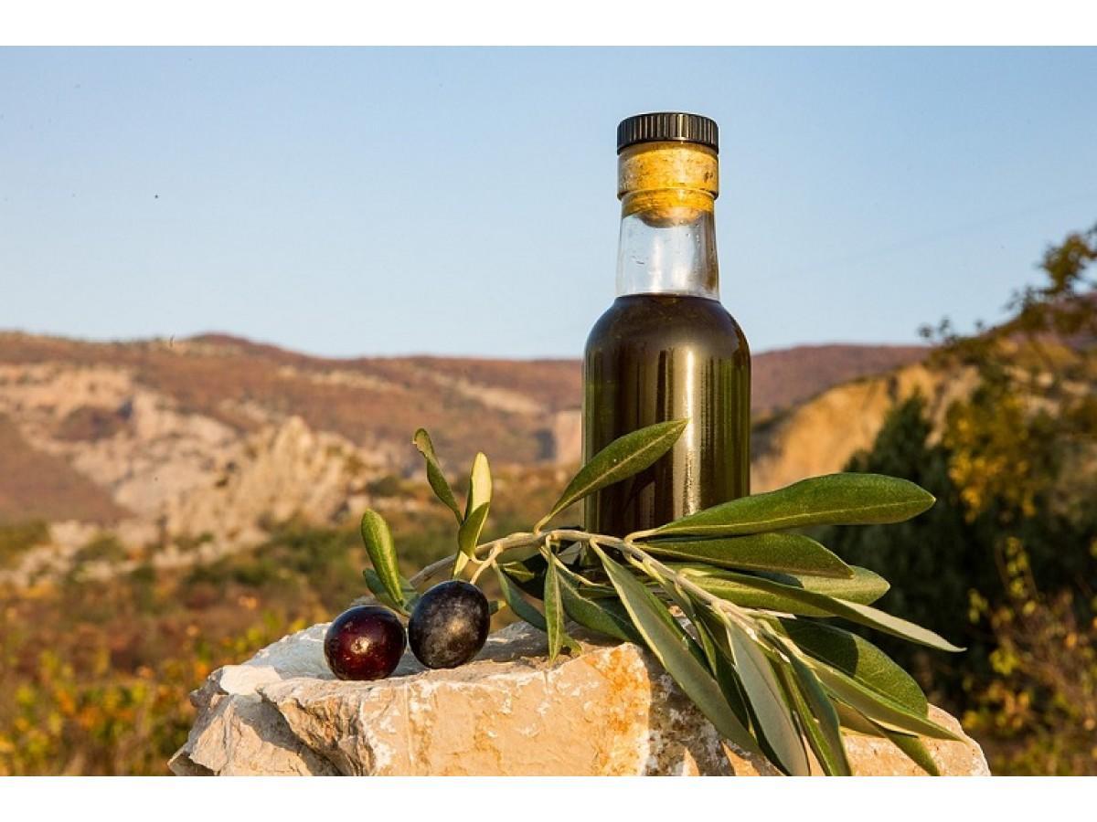 Оливковое масло холодного отжима - польза от его употребления