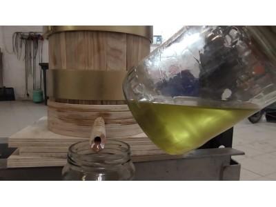 Производство растительного масла холодного отжима в домашних условиях